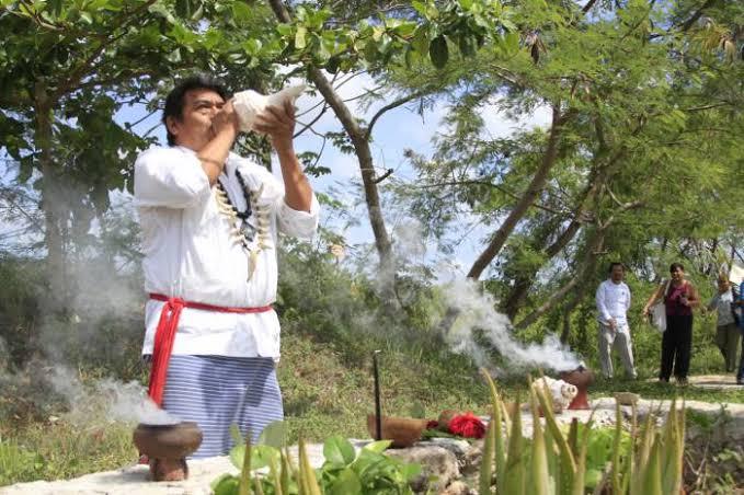 Herbolaria Maya