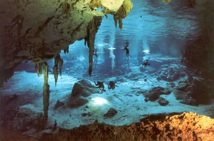 Cenotes de agua dulce