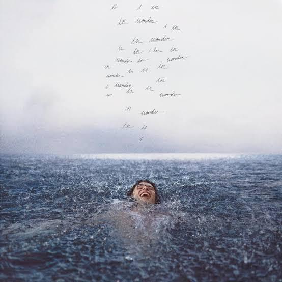 Shawn Mendes 'Wonder'